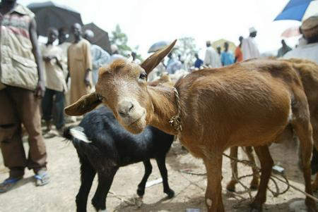 nigeria-turismo.jpg