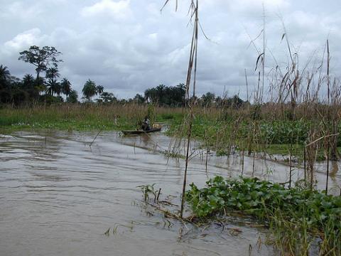 nigeria-enfrentamientos.jpg