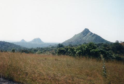 montana-nigeria.jpg